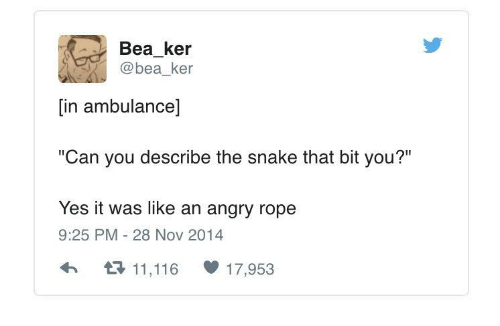 """Yes It Was: Bea_ker  @bea ker  [in ambulance]  """"Can you describe the snake that bit you?""""  Yes it was like an angry rope  9:25 PM 28 Nov 2014  h11,116 17,953"""