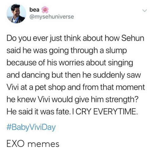 i cry: bea  @mysehuniverse  Do you ever just think about how Sehun  said he was going through a slump  because of his worries about singing  and dancing but then he suddenly saw  Vivi at a pet shop and from that moment  he knew Vivi would give him strength?  He said it was fate. I CRY EVERYTIME.  EXO memes