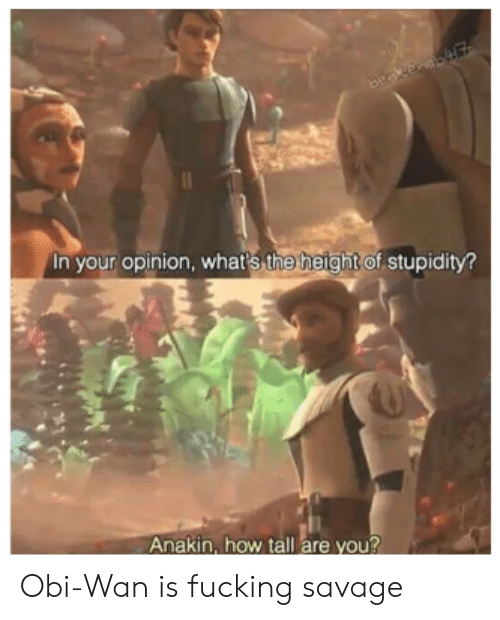 obi wan: beakenaE  In your opinion, whar's the height of stupidity?  Anakin, how tall are you? Obi-Wan is fucking savage
