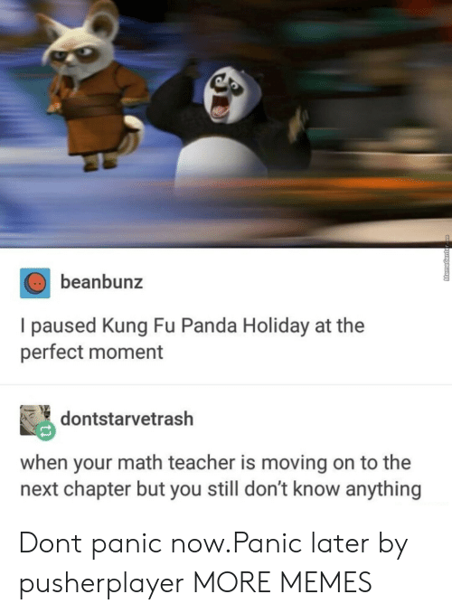 Dank, Memes, and Target: beanbunz  I paused Kung Fu Panda Holiday at the  perfect moment  dontstarvetrash  when your math teacher is moving on to the  next chapter but you still don't know anything Dont panic now.Panic later by pusherplayer MORE MEMES