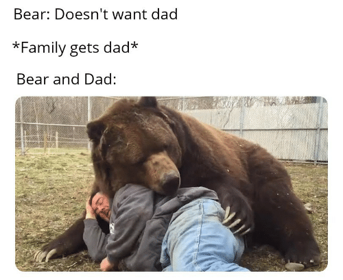 Bear: Bear: Doesn't want dad  *Family gets dad*  Bear and Dad:
