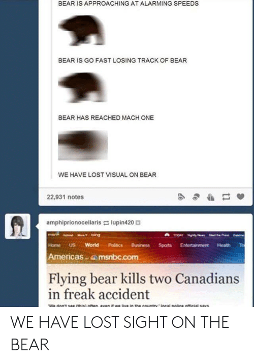Politics, Lost, and Bear: BEAR IS APPROACHING AT ALARMING SPEEDS  BEAR IS GO FAST LOSING TRACK OF BEAR  BEAR HAS REACHED MACH ONE  WE HAVE LOST VISUAL ON BEAR  22,931 notes  amphiprionocellaris-: lupin420。  HomeUS World Politics BusinessSports Entertainment Health Te  Americas dmsnbc.com  Flying bear kills two Canadians  in freak accident WE HAVE LOST SIGHT ON THE BEAR
