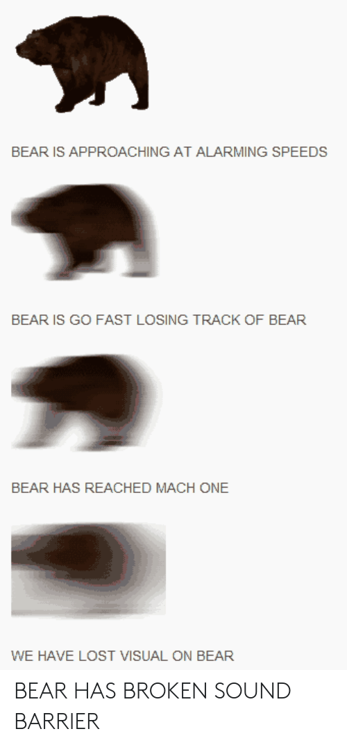 sound barrier: BEAR IS APPROACHING AT ALARMING SPEEDS  BEAR IS GO FAST LOSING TRACK OF BEAR  BEAR HAS REACHED MACH ONE  WE HAVE LOST VISUAL ON BEAR BEAR HAS BROKEN SOUND BARRIER