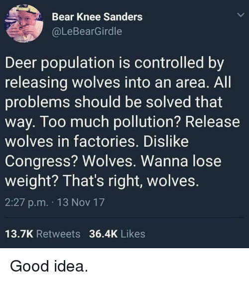 Deer, Too Much, and Bear: Bear Knee Sanders  @LeBearGirdle  Deer population is controlled by  releasing wolves into an area. All  problems should be solved that  way. Too much pollution? Release  wolves in factories. Dislike  Congress? Wolves. Wanna lose  weight? That's right, wolves  2:27 p.m. 13 Nov 17  13.7K Retweets 36.4K Likes Good idea.