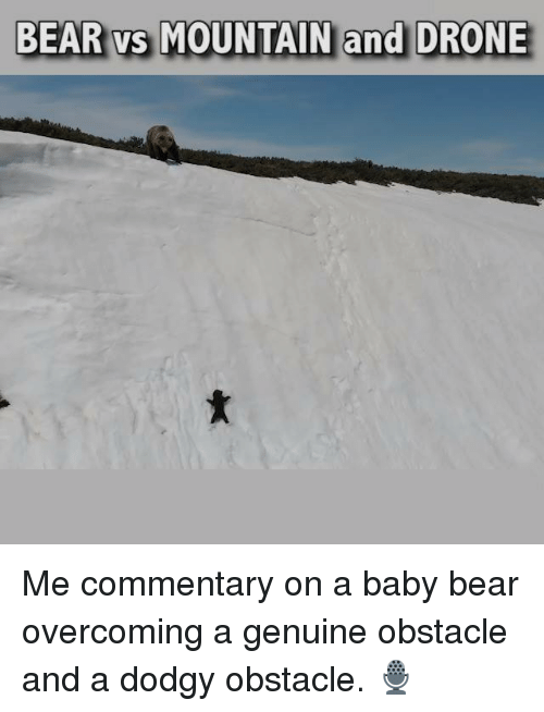 Drone, Memes, and Bear: BEAR vs MOUNTAIN and DRONE Me commentary on a baby bear overcoming a genuine obstacle and a dodgy obstacle. 🎙