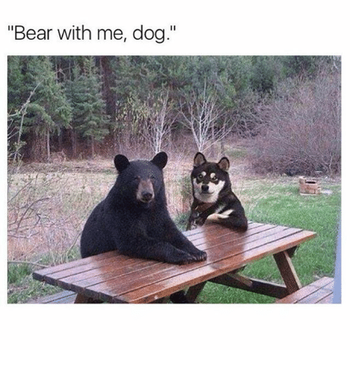 """bear with me: """"Bear with me, dog."""""""