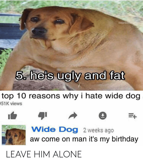 Being Alone, Birthday, and Ugly: bearbou  5 he's ugly and fat  top 10 reasons why i hate wide dog  51K views  Wide Dog 2 weeks ago  aw come on man it's my birthday LEAVE HIM ALONE