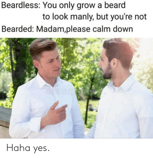 Bearded: Beardless: You only grow a beard  to look manly, but you're not  Bearded: Madam,please calm down Haha yes.