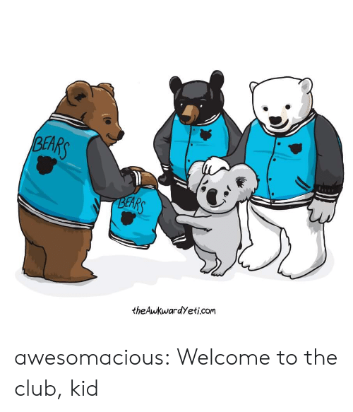 The Club: BEARS  BEARS  theAwkwardYeti.com awesomacious:  Welcome to the club, kid
