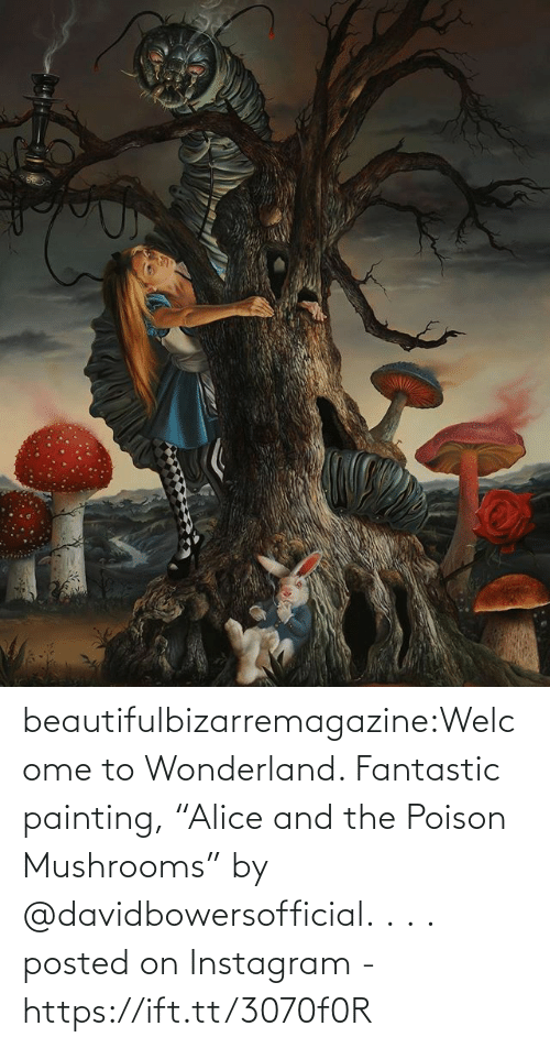 "Welcome To: beautifulbizarremagazine:Welcome to Wonderland. Fantastic painting, ""Alice and the Poison Mushrooms"" by @davidbowersofficial.⁣ .⁣ .⁣ .⁣         posted on Instagram - https://ift.tt/3070f0R"