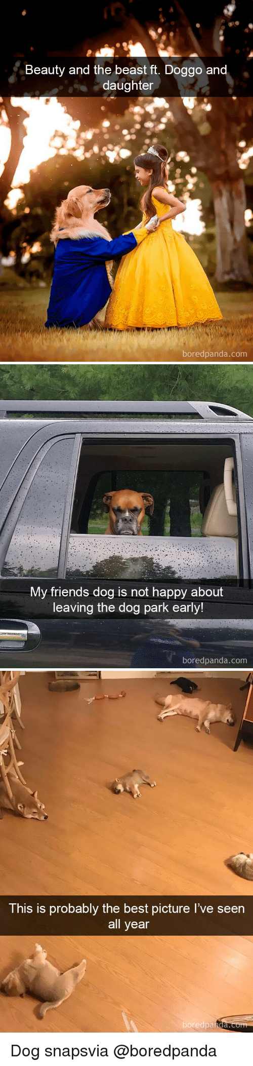 the beast: Beauty and the beast ft. Doggo an  daughter  boredpanda.com   My friends dog is not happy about  leaving the dog park early!  boredpanda.com   This is probably the best picture I've seen  all year  boredpa  nda. Dog snapsvia @boredpanda