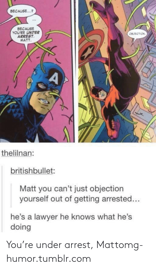 Hes Doing: BECAUSE...?  BECAUSE  YOU'RE UNDER  ARREST  MATT.  OBJECTION.  thelilnan:  britishbullet:  Matt you can't just objection  yourself out of getting arrested...  he's a lawyer he knows what he's  doing You're under arrest, Mattomg-humor.tumblr.com