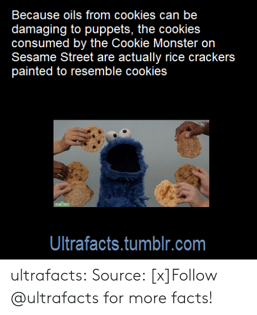 wikia: Because oils from cookies can be  damaging to puppets, the cookies  consumed by the Cookie Monster on  Sesame Street are actually rice crackers  painted to resemble cookies  Ultrafacts.tumblr.com ultrafacts:  Source: [x]Follow @ultrafacts for more facts!