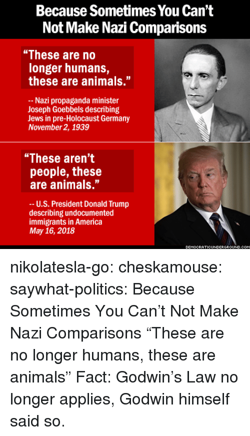"Sã¨X: Because Sometimes You Can't  Not Make Nazi Comparisons  ""These are no  longer humans,  these are animals.""  Nazi propaganda minister  Joseph Goebbels describing  Jews in pre-Holocaust Germany  November 2, 1939  ""These aren't  people, these  are animals.""  -- U.S. President Donald Trump  describing undocumented  immigrants in America  May 16, 2018  EMOCRATICUNDERGRO  UND.C nikolatesla-go:  cheskamouse:  saywhat-politics:    Because Sometimes You Can't Not Make Nazi Comparisons   ""These are no longer humans, these are animals""  Fact: Godwin's Law no longer applies, Godwin himself said so."