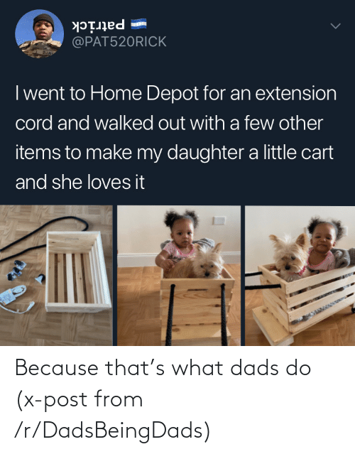 From: Because that's what dads do (x-post from /r/DadsBeingDads)