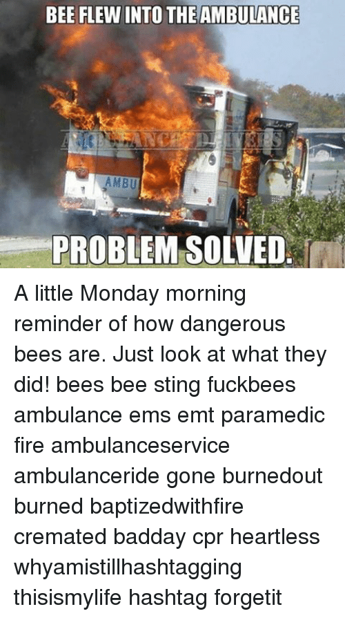 Stingly: BEE FLEWINTO THEAMBULANCE  AMBU  PROBLEM SOLVED A little Monday morning reminder of how dangerous bees are. Just look at what they did! bees bee sting fuckbees ambulance ems emt paramedic fire ambulanceservice ambulanceride gone burnedout burned baptizedwithfire cremated badday cpr heartless whyamistillhashtagging thisismylife hashtag forgetit