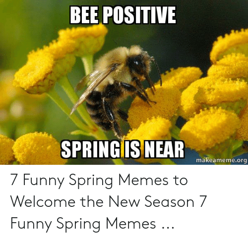 Funny Spring Memes: BEE POSITIVE  ISNEAR  SPRINGI  makeameme.org 7 Funny Spring Memes to Welcome the New Season 7 Funny Spring Memes ...