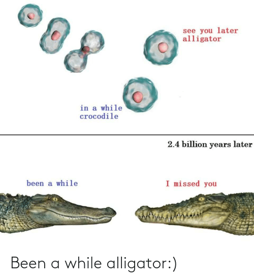 While: Been a while alligator:)