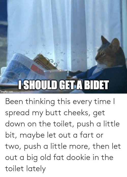 On The Toilet: Been thinking this every time I spread my butt cheeks, get down on the toilet, push a little bit, maybe let out a fart or two, push a little more, then let out a big old fat dookie in the toilet lately