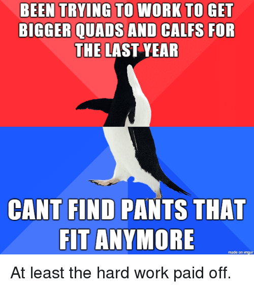 Work, Imgur, and Been: BEEN TRYING TO WORK TO GET  BIGGER QUADS AND CALFS FOR  THE LAST YEAR  FIND PANTS THAT  FIT ANYMORE  CANT  made on imgur At least the hard work paid off.