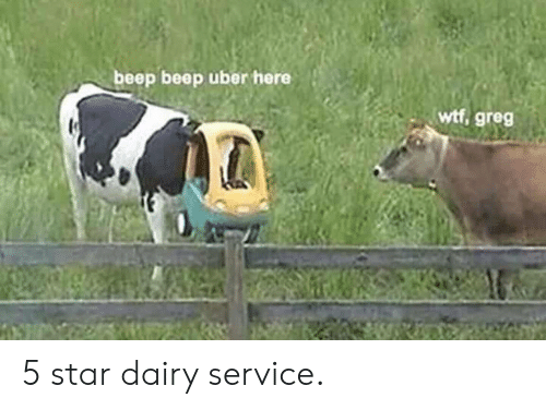 Uber, Wtf, and Star: beep beep uber here  wtf, greg 5 star dairy service.