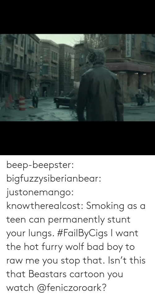 M: beep-beepster: bigfuzzysiberianbear:  justonemango:  knowtherealcost:  Smoking as a teen can permanently stunt your lungs. #FailByCigs  I want the hot furry wolf bad boy to raw me  you stop that.     Isn't this that Beastars cartoon you watch @feniczoroark?