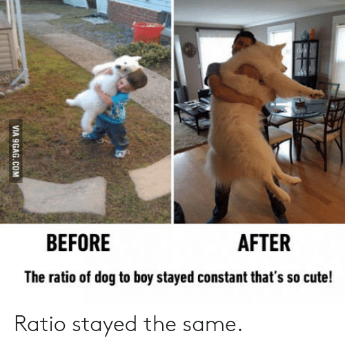 The Ratio: BEFORE  AFTER  The ratio of dog to boy stayed constant that's so cute!  VIA 9GAG.COM Ratio stayed the same.