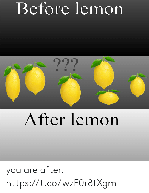 lemon: Before lemon  ???  After lemon you are after. https://t.co/wzF0r8tXgm