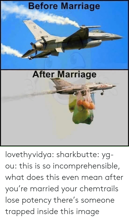 chemtrails: Before Marriage  After Marriage lovethyvidya:  sharkbutte:  yg-ou: this is so incomprehensible, what does this even mean after you're married your chemtrails lose potency    there's someone trapped inside this image