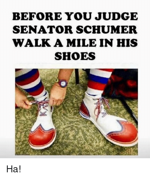 Memes, Shoes, and 🤖: BEFORE YOU JUDGE  SENATOR SCHUMER  WALK A MILE IN HIS  SHOES Ha!