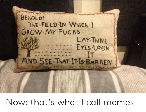 Fucks: BEHOLD!  ThE FIELD IN WhICh I  GROW MY FUCKS  LAY ThINE  EYES UPON  IT  SEE THAT IT IS BARREN  AND Now: that's what I call memes