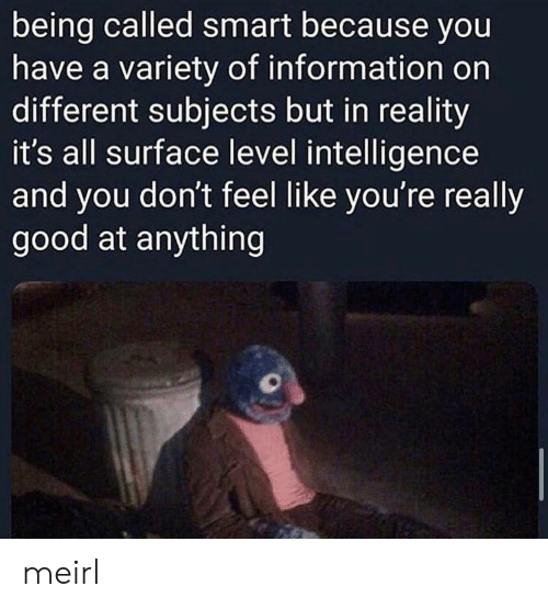 Good, Information, and Reality: being called smart because you  have a variety of information on  different subjects but in reality  it's all surface level intelligence  and you don't feel like you're really  good at anything meirl