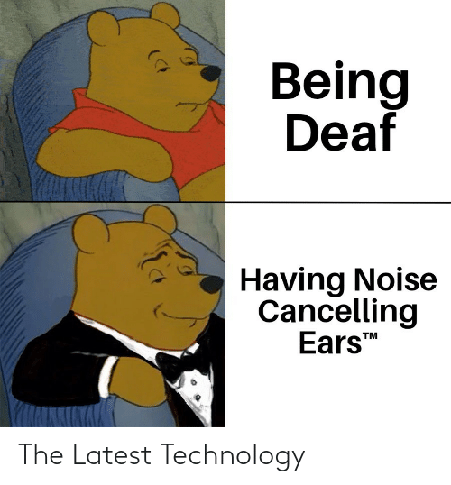 noise: Being  Deaf  Having Noise  Cancelling  Ears  TM The Latest Technology