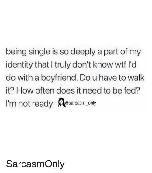 Im Not Ready: being single is so deeply a part of my  identity that I truly don't know wtf l'd  do with a boyfriend. Do u have to walk  it? How often does it need to be fed?  I'm not ready osarcasm. only SarcasmOnly