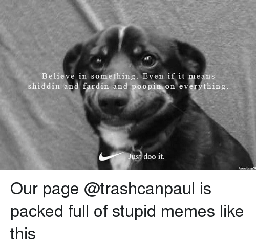 Stupid Memes: Believe in something. Even if it means  shiddin and fardin and poopin on everything  ust doo it. Our page @trashcanpaul is packed full of stupid memes like this