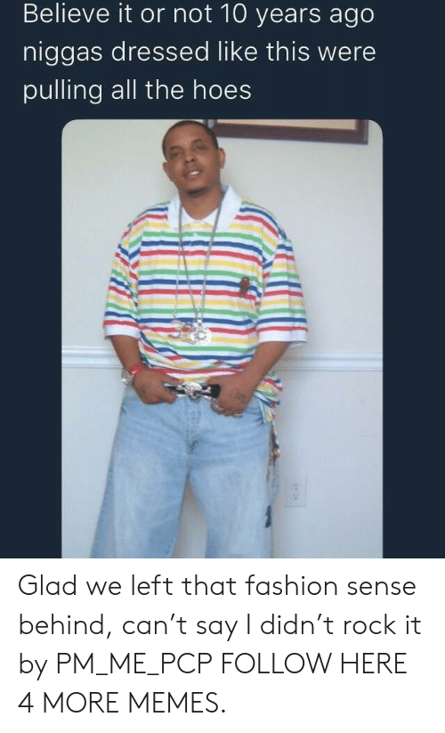 The Hoes: Believe it or not 10 years ago  niggas dressed like this were  pulling all the hoes Glad we left that fashion sense behind, can't say I didn't rock it by PM_ME_PCP FOLLOW HERE 4 MORE MEMES.