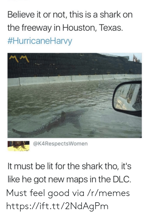 Lit, Memes, and Shark: Believe it or not, this is a shark on  the freeway in Houston, Texas.  #HurricaneHarvy  MM  @K4RespectsWomen  It must be lit for the shark tho, it's  like he got new maps in the DLC Must feel good via /r/memes https://ift.tt/2NdAgPm