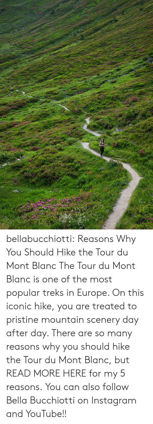Reasons Why: bellabucchiotti:  Reasons Why You Should Hike the Tour du Mont Blanc   The Tour du Mont Blanc is one of the most popular treks in Europe. On  this iconic hike, you are treated to pristine mountain scenery day after  day. There are so many reasons why you should hike the Tour du Mont  Blanc, but READ MORE HERE for my 5 reasons.   You can also follow Bella Bucchiotti on Instagram and YouTube!!