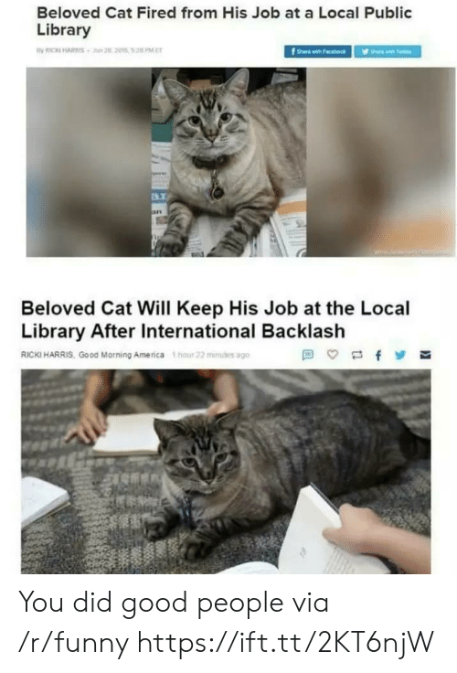 public library: Beloved Cat Fired from His Job at a Local Public  Library  B.i  Beloved Cat Will Keep His Job at the Local  Library After International Backlash  RICKI HARRIS, Good Morning America hour 22 mius ago You did good people via /r/funny https://ift.tt/2KT6njW