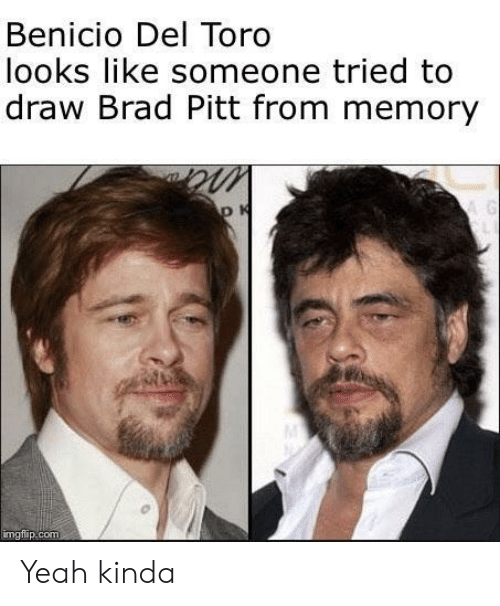 Benicio Del Toro, Brad Pitt, and Yeah: Benicio Del Toro  looks like someone tried to  draw Brad Pitt from memory  mgtilip.com Yeah kinda