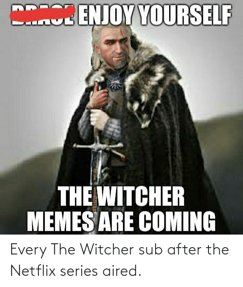 Memes Are Coming: BENJOY YOURSELF  THE WITCHER  MEMES ARE COMING Every The Witcher sub after the Netflix series aired.