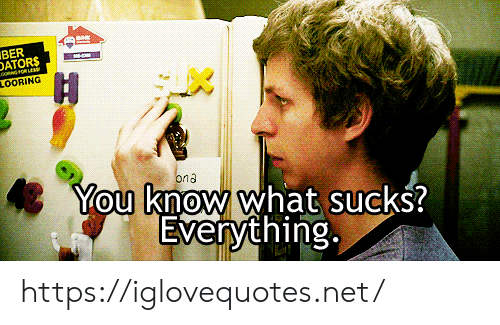 ber: BER  DATORS  H  LOORING  You know what sucks?  Everything  ona https://iglovequotes.net/