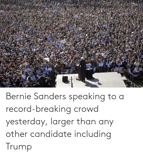 Bernie Sanders, Record, and Trump: Berna  Bemie Bernie Sanders speaking to a record-breaking crowd yesterday, larger than any other candidate including Trump