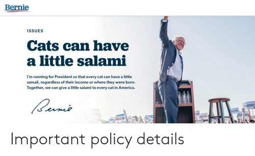 Bernie: Bernie  ISSUES  Cats can have  a little salami  I'm running for President so that every cat can have a little  samali, regard less of their income or where they were born.  Together, we can give a little salami to every cat in America.  ernie  crnie  mie  Be de  AK Important policy details