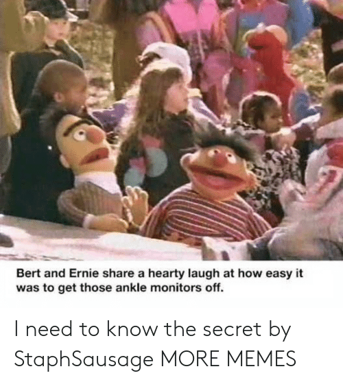 I Need To Know: Bert and Ernie share a hearty laugh at how easy it  was to get those ankle monitors off. I need to know the secret by StaphSausage MORE MEMES
