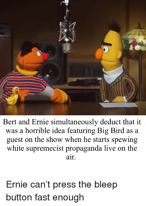 Live, Propaganda, and White: Bert and Ernie simultaneously deduct that it  was a horrible idea featuring Big Bird as a  guest on the show when he starts spewing  white supremecist propaganda live on the  air. Ernie can't press the bleep button fast enough