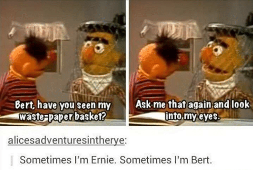 Funny, Ask, and Paper: Bert, have you seen my Ask me that again and look  waste-paper basket?  into,my eyes  alicesadventuresintherye:  Sometimes I'm Ernie. Sometimes I'm Bert.