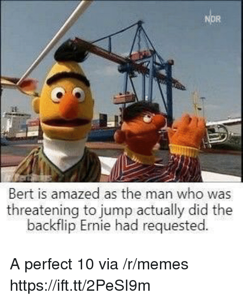 Memes, Who, and Via: Bert is amazed as the man who was  threatening to jump actually did the  backflip Ernie had requested A perfect 10 via /r/memes https://ift.tt/2PeSI9m