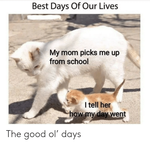 The Good: Best Days Of Our Lives  My mom picks me up  from school  I tell her  how my day went The good ol' days