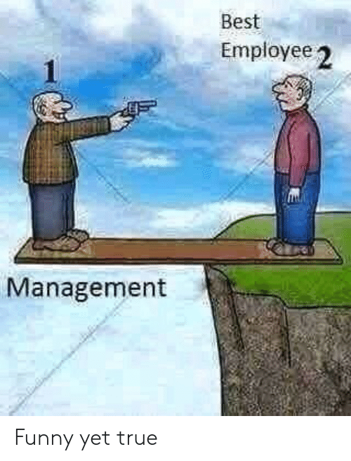 Funny, True, and Best: Best  Employee 2  Management Funny yet true